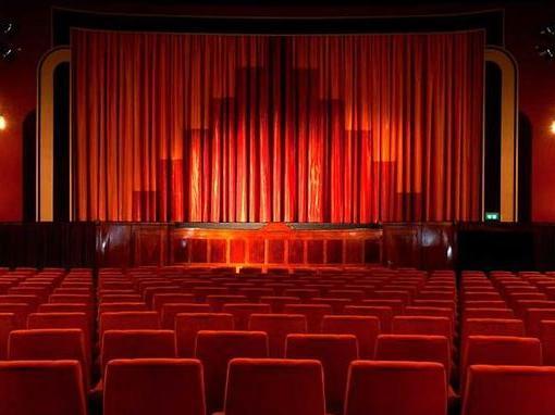 daun kino